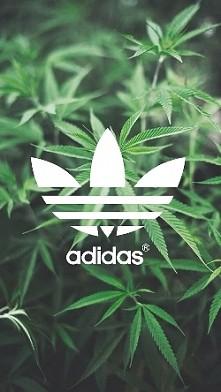 adidas *-*