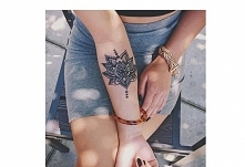 kwait lotosu