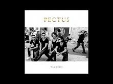 Pectus - Szkoła marzeń
