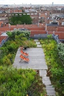 ••roof garden