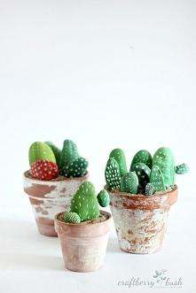 kaktus z kamienia - sposób na smutne wnętrze