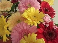Bo bukiet ulubionych kwiatów od ukochanego faceta daje naprawdę dużo szczęścia.