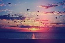 Morze jest piękne<3
