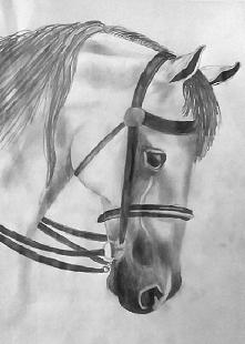Kolejny koń do kolekcji :P  Co myślicie o moim nowym rysunku.? :D