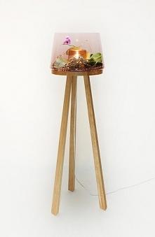 Bo lampy wcale nie muszą być nudne:)