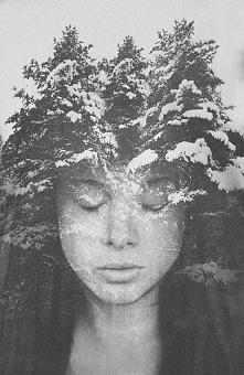 w koronie drzew