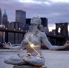 Expansion, Paige Bradley, Nowy Jork, USA