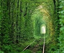 Tunel miłości. Ukraina