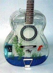 Nietypowe akwarium :)
