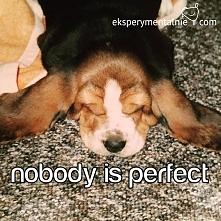 Nie chcę być idealna, nie c...