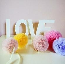 tiu_LOVE ❤