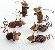 Myszki z szyszek