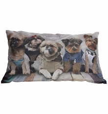 Poduszki w psy 50x30 cm