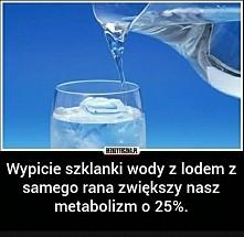 lód z wodą