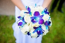 mój ślubny róże i storczyk tajlandzki