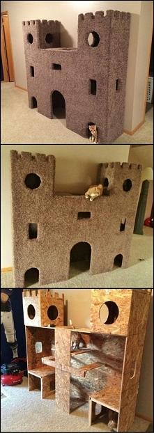 Domek dla kota :P