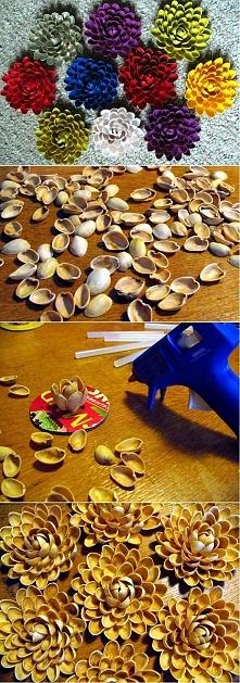Po co wyrzucac łupinki skoro można je wykorzystać...    Ciekawe czy by wyszło z łuskami od słonecznika;p W sumie taniej by wyszło ;]