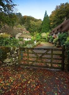 Dartmoor, Anglia