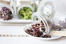 Kiełki buraka - samo zdrowie - jak hodować, które wybrać i z czym je jeść :)