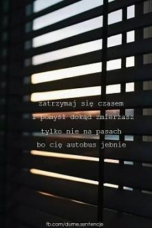 Specyficzny życiowy cytat ;D