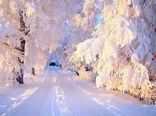 I żeby tyle śniegu spadło w te zimę :D ♡