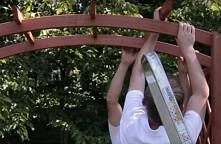 Budowa drewnianej pergoli o...