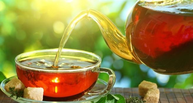 Czystek, najzdrowsza herbata świata. Silnie działa na układ immunologiczny. Ktoś próbował?