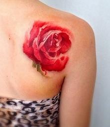 czerwona róża na łopatce