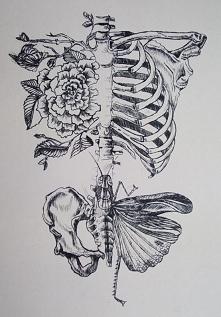 Art / Ołówek