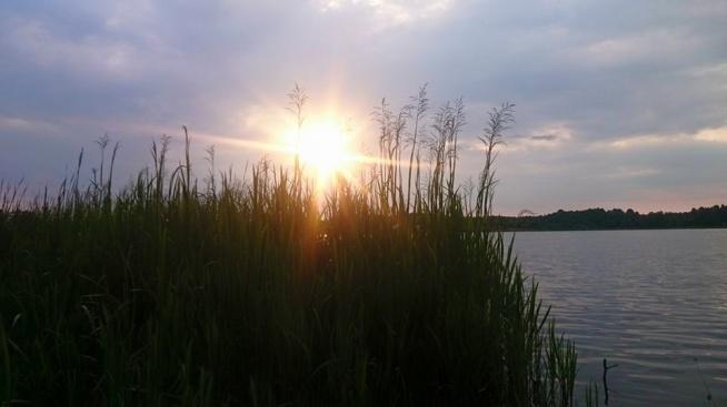 Miły,ciepły wieczór. Glinki,Włodawa. Fotografia z kategorii podróże, miejsca, krajobraz.