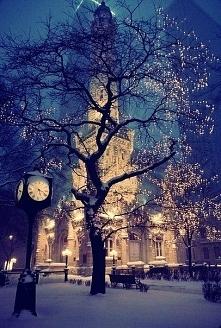 W Zimie jest tak ślicznieee...