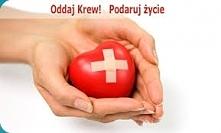 Oddaje ktoś? Oddając krew ratujesz komuś życie, a to nic nie kosztuje