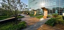 Miasto : Beijing Kraj :Chiny kategoria  Business ParkForecourtFurnitureLighti...