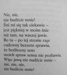 ~Jeremi Przybora