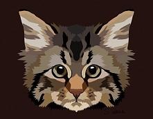 """Kot 2 Znajdziecie mnie na facebooku pod """"Wilczycas Art"""" Poslijcie mi zdjecie swojego zwierzaka a tez wam taki obrazek zrobie."""