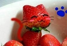 Słodki, truskawkowy kotek :)