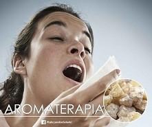 Alergie powodujące katar, swędzenie nosa i oczu to nie tylko problem wiosenny. Aby złagodzić objawy takiej alergii wetrzyj w opuszki palców olejek kadzidłowy (olibanum) i wdycha...
