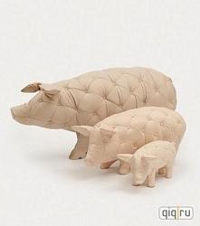pikowane świnki ;D