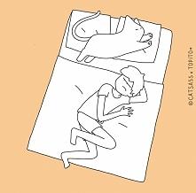 10 pozycji, w których kot śpi z człowiekiem. WIĘCEJ PO KLIKNIĘCIU W OBRAZEK.