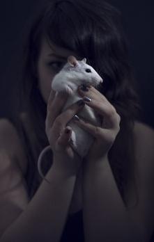 prześliczne, milusie zwierzątko :>