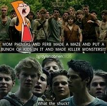 I Newt jako Ferb xd