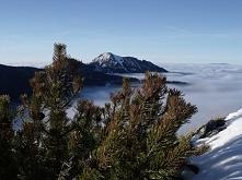 Tatry zimą <3