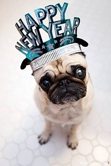 Happy New Year ;)