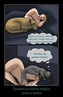 Różnica między psem, a kotem;)