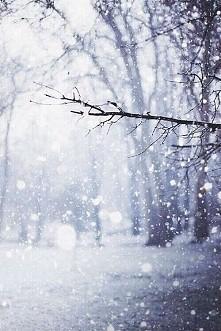 Czekamy na zimę ❤❤
