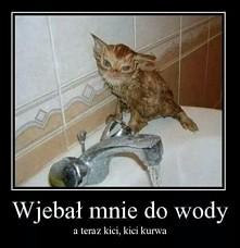 hahahahahhahaaha