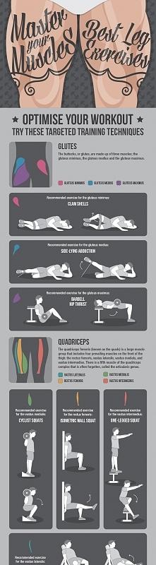 Trening mięśni nóg [Infografika]