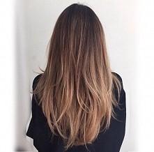 hair /light/ombre