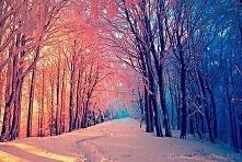 Zima też może być piękna ;)