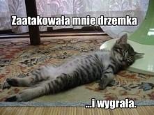 hehe :')